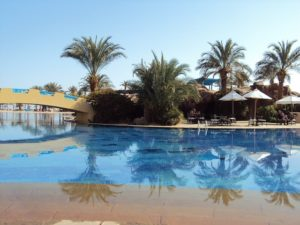 pool service palm desert